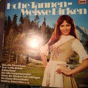LP Hohe Tannen - Weisse Birken