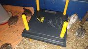 Vermiete Wärmeplatte für Küken 25x25cm