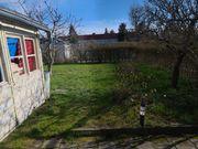 Garten Kleingarten 39110