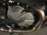 SUCHE Ducati Monster ab Bj