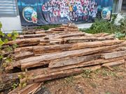 abruchholz altholz brennholz zu verschenken