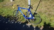 Da Vinci Campagnolo RH 56cm