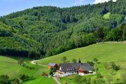 Schwarzwald - Urlaub auf dem Müllerbauernhof