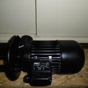 Brinkmann Pumpe TE142 380 001