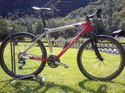 Fahrrad - Mountainbike - Bergziege - Hillclimb