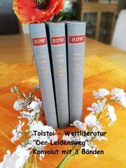 Tolstoi Weltliteratur Der Leidensweg 3