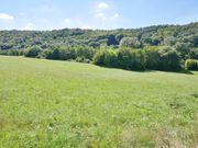 2 Hektar Bauland am Wald