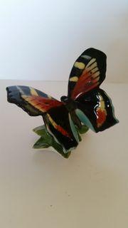 Schmetterling Porzellan Karl Ens Volkstedt