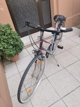 Pegasus Torpedo City Damenfahrrad: Kleinanzeigen aus Frankfurt Ostend - Rubrik Damen-Fahrräder
