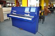 Hoher Klavier in blau poliert