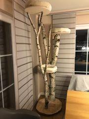 Naturkratzbaum 220 cm