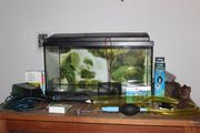 Aquarium 65 Liter