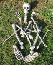 Helloween Set Horror Dekoknochen Knochen