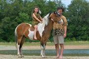 SEHR LIEBE Hypoallergen Curly pony