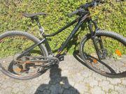 KTM Mounteinbike