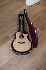 Taylor PS16ce Presentation Gitarre