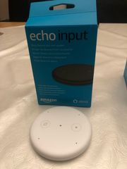 Amazon Alexa Echo Input