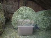 4kg Heu für Hasen Kanninchen