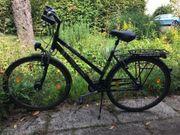 triumph fahrrad