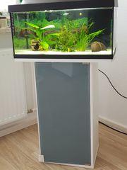 Aquarium mit Unterschrank Fischen und