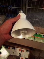 lamp und lampe