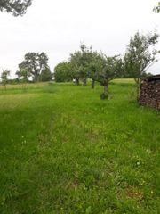 Gartengrundstück in 74343 Sachsenheim