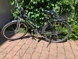 Damen-Fahrräder - Damenfahrrad Winona Mendocino mit unplatbaren
