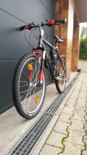 Fahrrad Neu