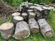 Brennholz an Selbstabholer zu verschenken