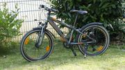 Kinder Fahrrad 20 Zoll Triumph