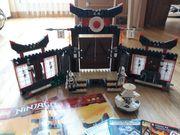 Lego Ninjago Spinjitzu Trainingszentrum 2504