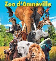 Tickets für den Zoo d