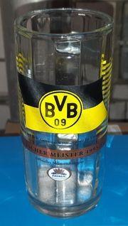 BVB Glas