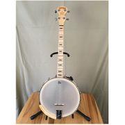 Deering Goodtime Openback Tenor Banjo