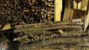Buscheln für den Kachelofen