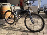 Damen MTB Mountainbike Fahrrad von