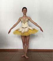 Professionelles Ballett-Tutu