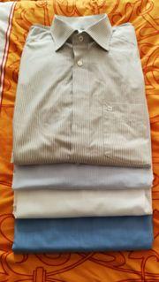 7x Marken Herrenhemden 42 von
