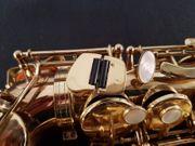 Altsaxophon Selmer Super Action II