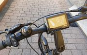 E Bike Pedelec Trekking