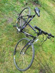 Damen Fahrrad Gudereit 28 Zoll