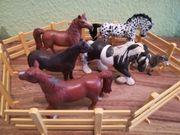 Schleichpferde Schleich Pferde 6 Stück