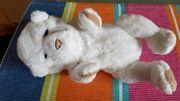 Interaktive Teddy Bär Spielzeug
