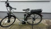 Raleigh Stoker B 8 E-Bike