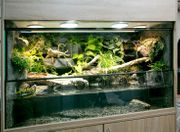 Aqua-Terrarium Paludarium z B für