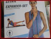 Expander-set