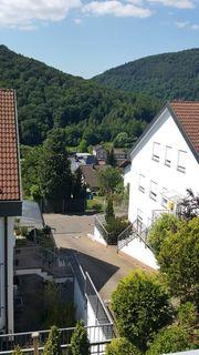 Wunderschöne 3-Zimmer Wohng Neckarsteinach