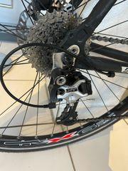Sportliches Crossbike Serious Sonoran matt