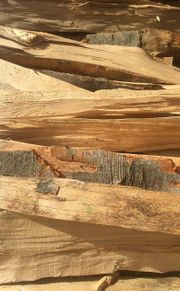1SRM Brennholz 100 Buche 33cm