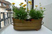 Messing-Blumenkasten für innen und außen